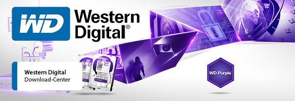 EXPERT-Kataloge Western Digital