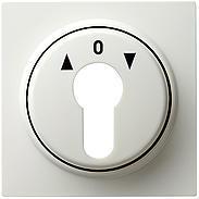 Gira Zentralplatte Schlüsselschalter rws S-Color