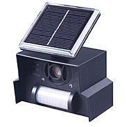 Vogelabwehr Solar