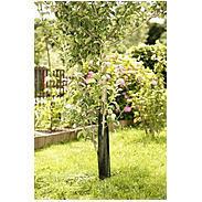 Baumschutzgitter 35x55cm, schwarz, 2 Stück