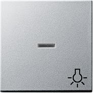 Gira Wippe Licht mit Fenster alu System 55