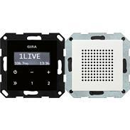 Gira UP-Radio RDS rws-gl System 55