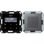Gira UP-Radio RDS anth System 55