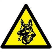 Pentatech Elektronischer Wachhund EW 01