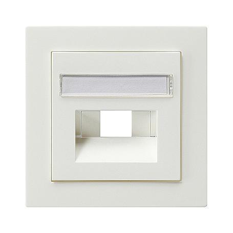 Gira Zentralplatte UAE/IAE Schriftf. rws S-Color