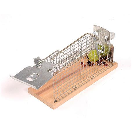 Lebend-Mausefalle Käfig