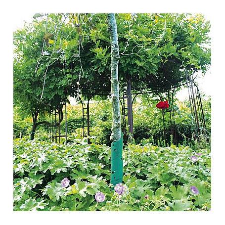 Baumschutzspiralen 60cm, grün, 2 Stück