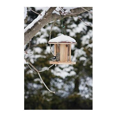 Vogelfuttersilo CAMBRIDGE, 27x23x28cm