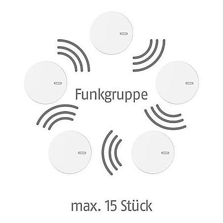 ABUS Funk-Rauchmelder RWM450 - 10er