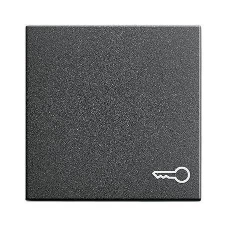 Gira Wippe Tür anth System 55