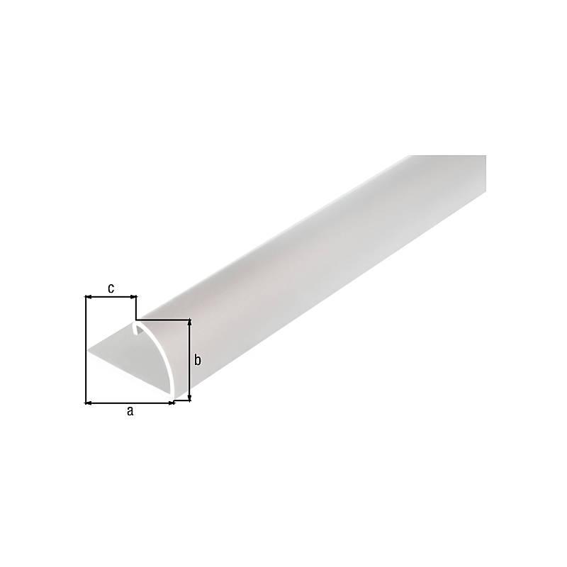 Aluminium GAH-Alberts 476557 Abschlussprofil 1000 x 24,5 x 13,5 mm silberfarbig eloxiert