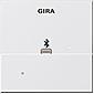 Gira Dockingstation Apple Lightning rwsgl System55