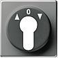 Gira Zentralplatte Schlüsselschalter Edelstahl