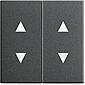 Gira Wippe m. Pfeilsymbolen anth System 55