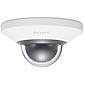 Sony SNC-DH110TW IP-Dome Tag/Nacht 1280x960 Vandal