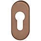 FSB Rahmentür Schlüsselrosette 17 1757 PZ Bronze